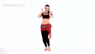 Basic and Shimmy Moves Belly Dance