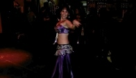 Belly Dancer Cat Olive Gypsy Nights