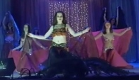 Belly dance Harem
