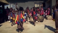 Best Zulu traditional wedding dance