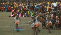 Zulu Dance from Reed Dance Ceremony